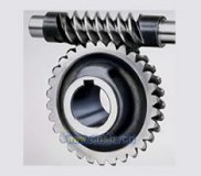Factory Price Worm Gear/Auto Part