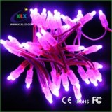 LED Christmas light outdoor waterproof F5