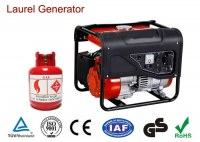 Single Phase Mini Natural Gas Generators with Strong Frame 3000 / 3600 rpm