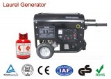 50/60Hz Home Natural Gas Generators with Circuit Breaker Provide Electric Power