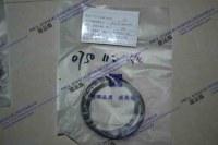 XCMG ZL60G- 4644 152- Piston seal-200-0750 112 140