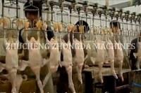 Full Chicken slaughter and abattoir equipment