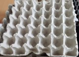 Egg tray machines