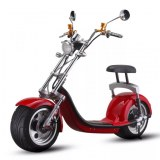 Electric scooter 800 to 2000w