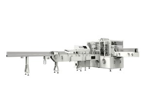 Automatic Face Tissue Packing Machine ZB290