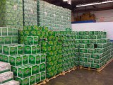 Heineken, Kronenbourg 1664 , Corona Extra, Carlsberg, Becks Beer 250ml/330ml