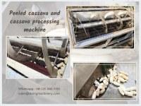 Cassava roots sand roller peeler & washer for garri processing machine