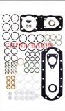 Pump Repair Kits 800619