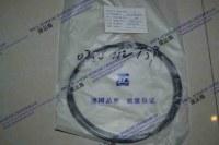 XCMG ZL60G- 4644 152- Piston seal-160-0750 112 139