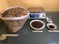 Iboga root barks for sale, Iboga TA powder for sale, Ibogaine HCl powder for sale