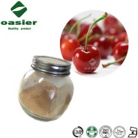 Natural VC17% Acerola Cherry Extract Powder