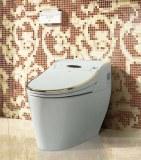 HK768 one piece intelligent smart toilet electronic Bidet