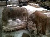 Somalian sheep&Cow dry skin (leather)