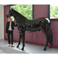 CHEVAL EN RESINE LAQUEE TAILLE REELLE - 190x220cm -