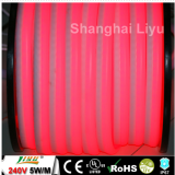 China manufacture LED neon flexible CE & ROHS