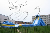 Good price Giant Inflatable Water Slide for Adult for sale !!!