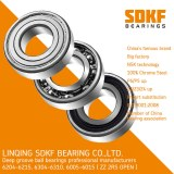 Auto High Precision Deep Groove Ball Bearing 6304-ZZ-2RS SDKF Brand