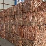 Best price hot sell copper wire scrap /Copper Scrap, Copper Wire Scrap, Mill berry Copp...