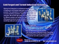 Customized cold forged and turned fasteners and bolts made in Taiwan