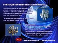 Custom made cold forged fasteners and rivets made in Taiwan