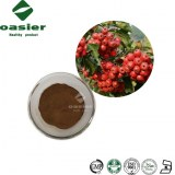 Hawthorn Berry/Leaf Extract