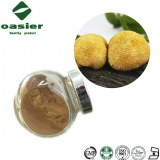 Hericium Erinaceus Polysaccharide Extract, Lions Mane Mushroom Extract