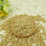 High quality sweet raw buckwheat,roasted buckwheat