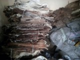 Dry & Wet salted Donkey Hides For Sale (WhatsApp # +255745590659)