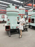 Raymond vertical grinding mill is flour mill for grinding machine