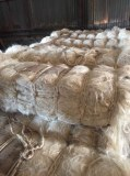 100% Natural Sisal Fiber For Sale (whatsApp # +255745590659)