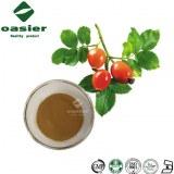 Plant Extract Rosehip Extract Powder Rosehip Polyphenols