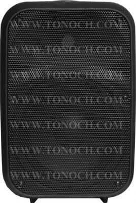 THR 12/15 BU Series Active Speaker Box with 2 MIC INPUT in It