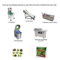Créez une unité de transformation de salade verte fraîche conditionnée sous vide