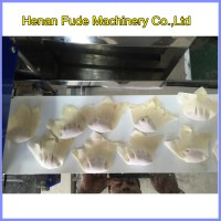 Ravioli dumpling making machine