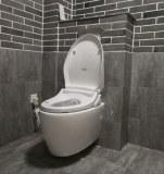 SAT530 wall hung drainage smart intelligent toilet bidet